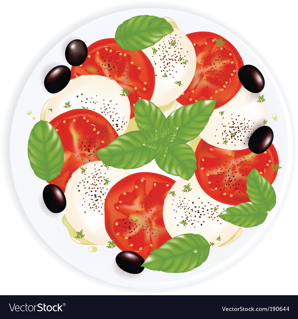 Caprese salad vector | Price: 1 Credit (USD $1)