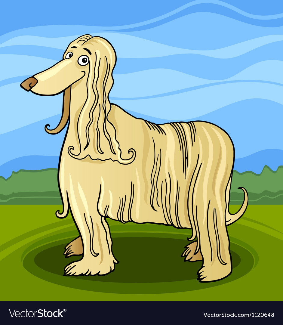 Cartoon afghan hound dog vector | Price: 1 Credit (USD $1)