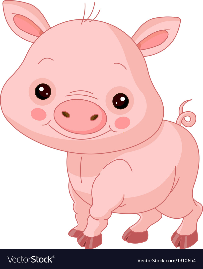 Fun zoo pig vector | Price: 1 Credit (USD $1)
