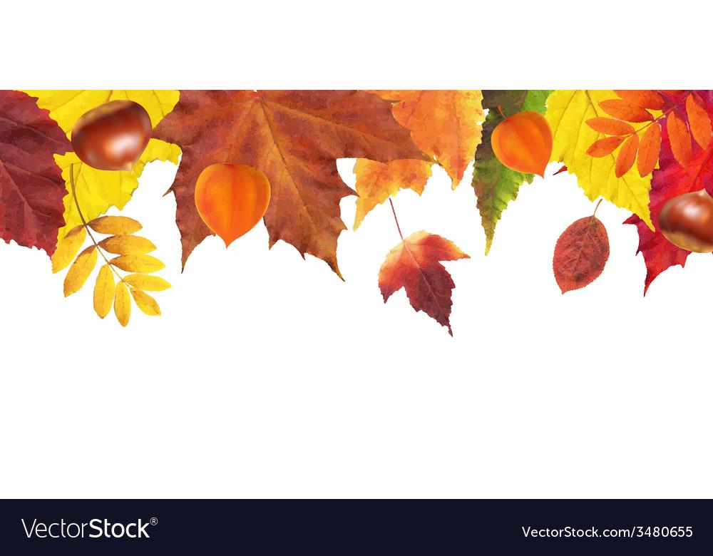 Autumn leaves border vector | Price: 1 Credit (USD $1)