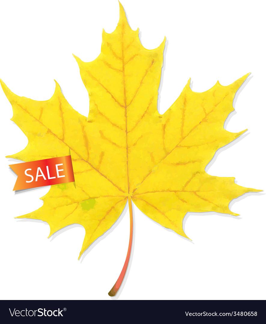 Autumn sale leaf vector | Price: 1 Credit (USD $1)
