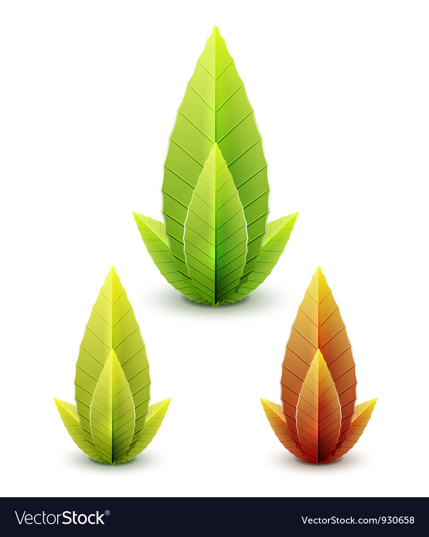 Set of leaves - autumn and summer concept vector | Price: 1 Credit (USD $1)