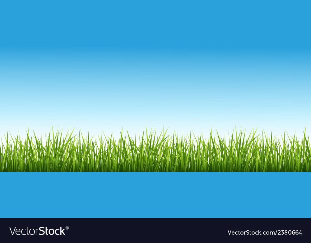 Grass and the sky vector | Price: 1 Credit (USD $1)