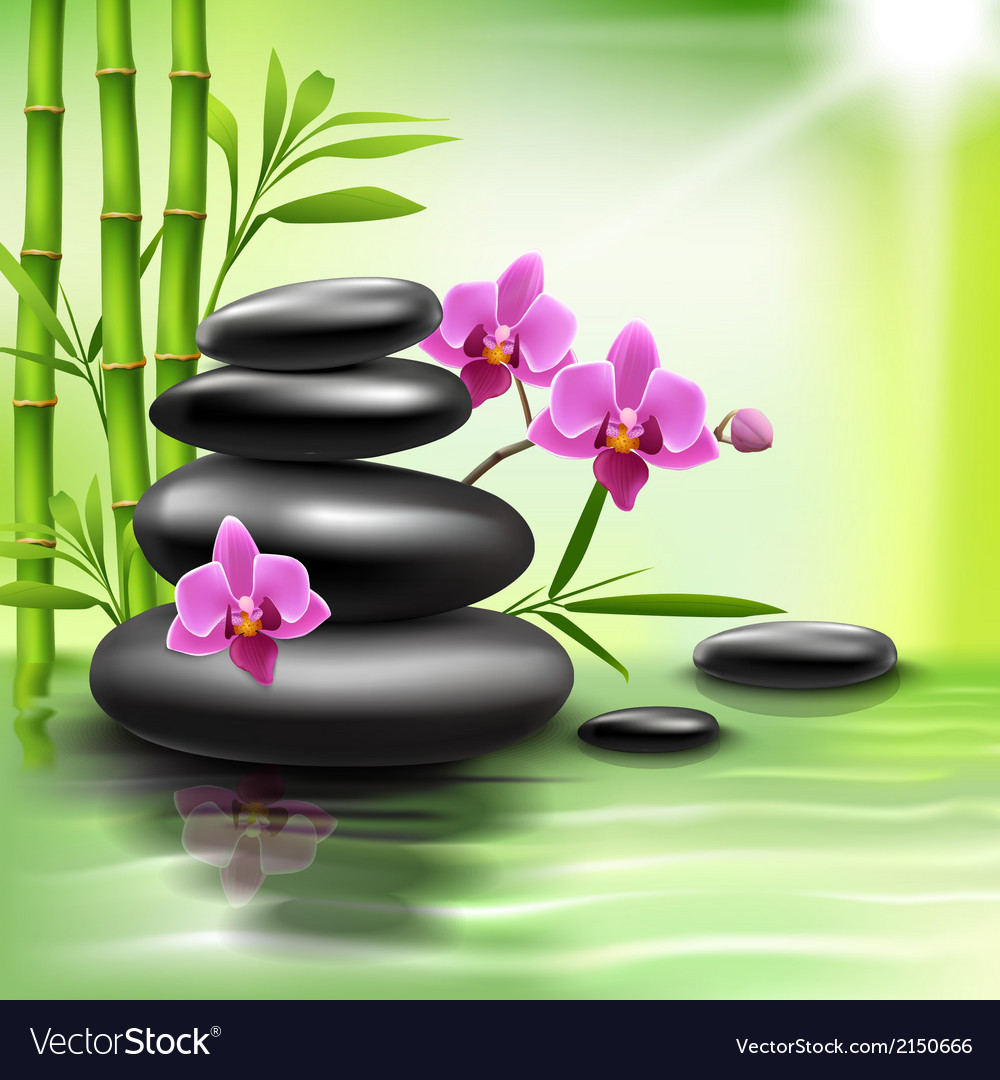 Realistic spa background vector | Price: 1 Credit (USD $1)
