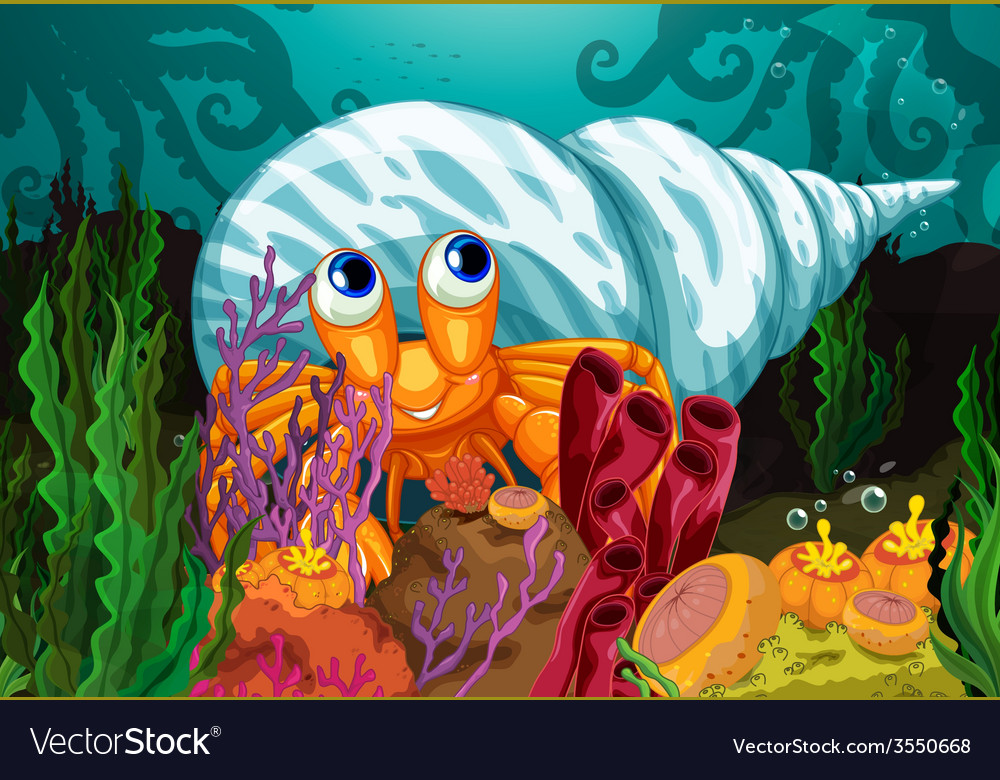A big shell near the seaweeds vector   Price: 3 Credit (USD $3)