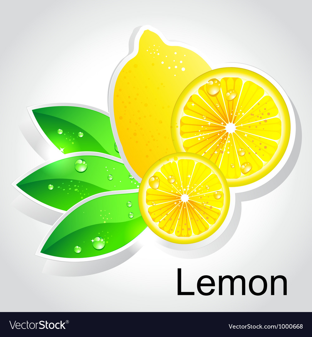 Lemon vector | Price: 1 Credit (USD $1)