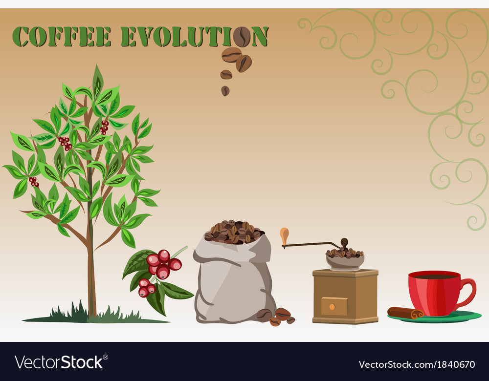 Coffee evolution vector | Price: 1 Credit (USD $1)