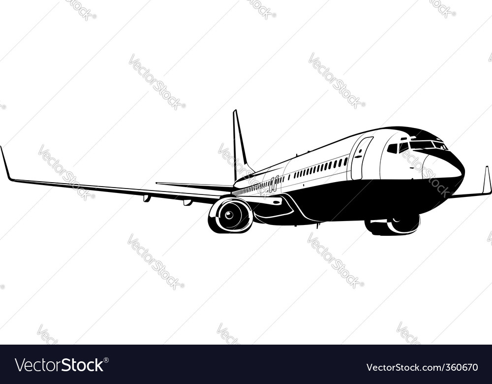 Commercial airliner vector | Price: 1 Credit (USD $1)