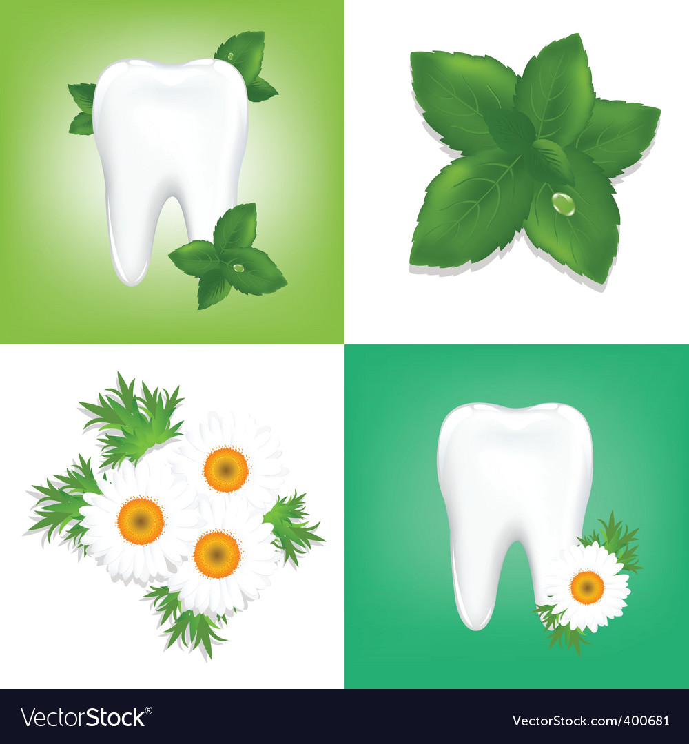 Tooth care design vector | Price: 1 Credit (USD $1)
