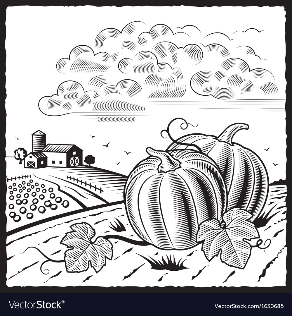 Landscape with pumpkins black and white vector | Price: 1 Credit (USD $1)