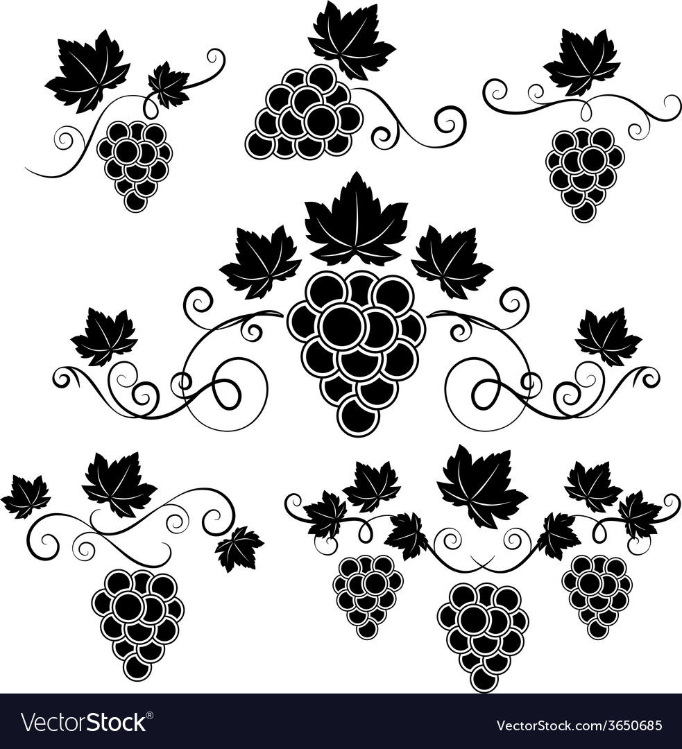 Winery design elements set vector | Price: 1 Credit (USD $1)