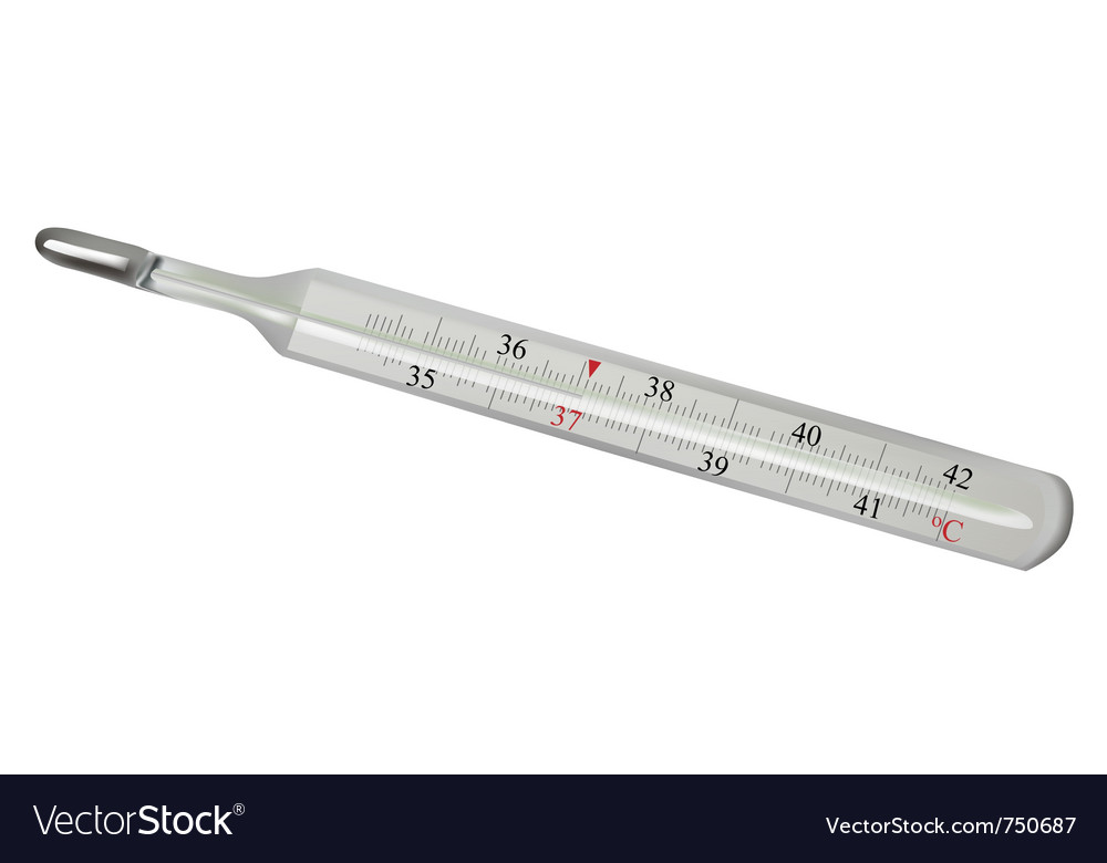 Mometer isolated vector | Price: 1 Credit (USD $1)