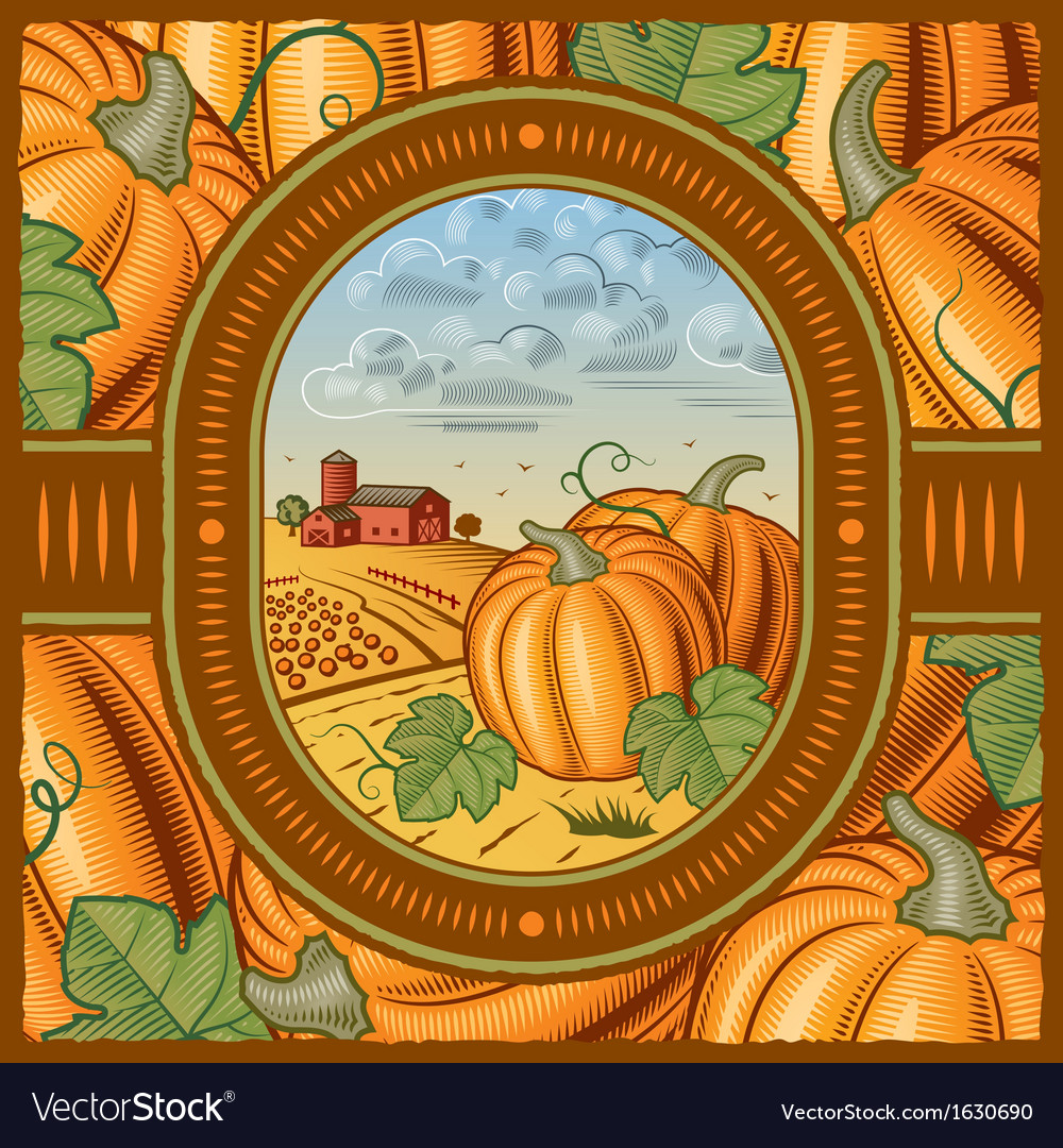 Pumpkin harvest vector | Price: 3 Credit (USD $3)