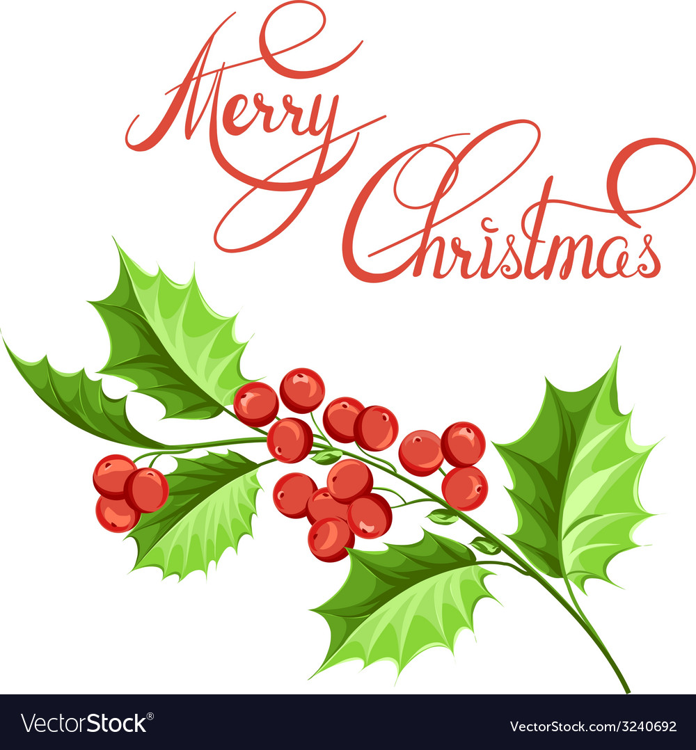 Christmas mistletoe branch drawing vector | Price: 1 Credit (USD $1)
