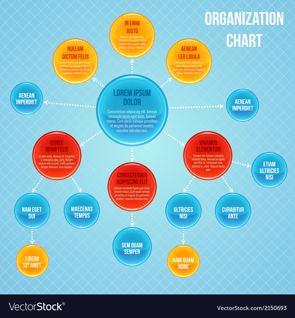 Organizational chart infographic vector | Price: 1 Credit (USD $1)