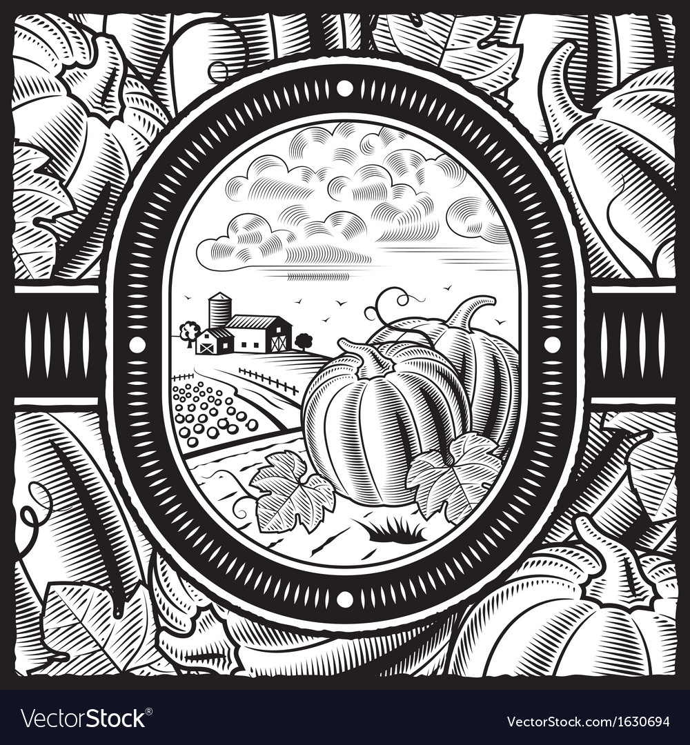 Pumpkin harvest black and white vector | Price: 1 Credit (USD $1)