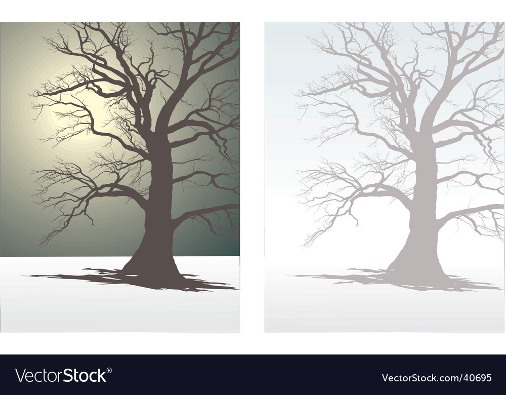 Tree in winter fog vector | Price: 1 Credit (USD $1)