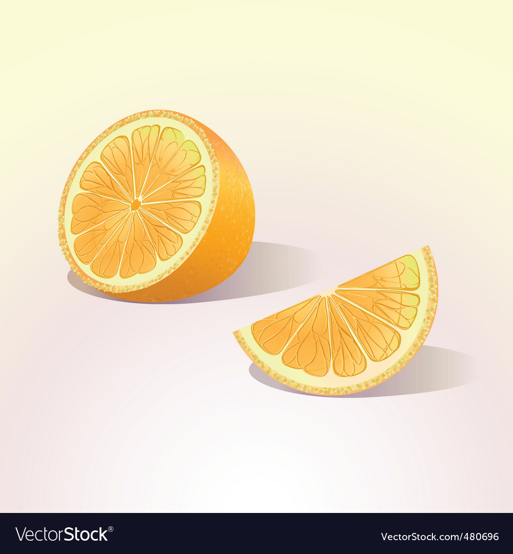 Orange fruit with a slice vector | Price: 1 Credit (USD $1)