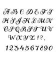 Font calligraphy vector