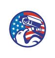 American bald eagle vector