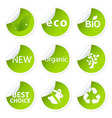 Eco sticker set vector