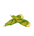 Fresh bamboo shoots on a white background vector