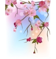 Background with gentle sakura branches vector