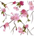 Seamless background with sakura branch vector