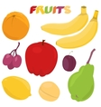 Cartoon fruit set vector