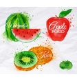 Fruit watercolor watermelon kiwi apple red vector