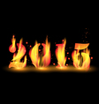 Happy new year 2015 by blaze fire flame vector