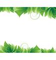 Lush foliage on white background vector