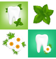 Tooth care design vector