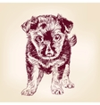 Puppy dog hand drawn llustration vector