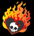 Lovely skull with fier on isolate background vector