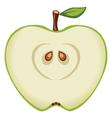 Green apple vector