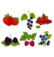Fresh berries set vector