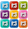 Buttons with intestines vector