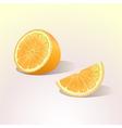 Orange fruit with a slice vector