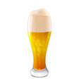 Glass of beer vector