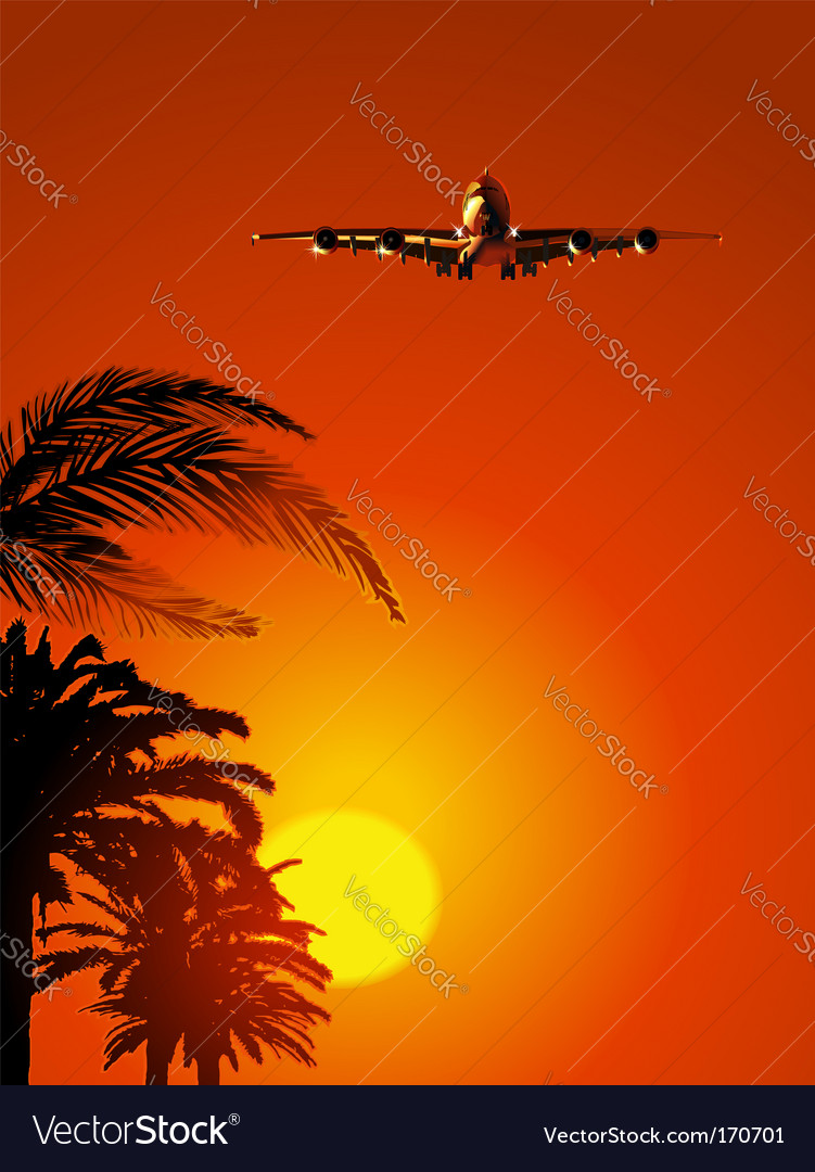 Airliner on sunset sky vector | Price: 1 Credit (USD $1)