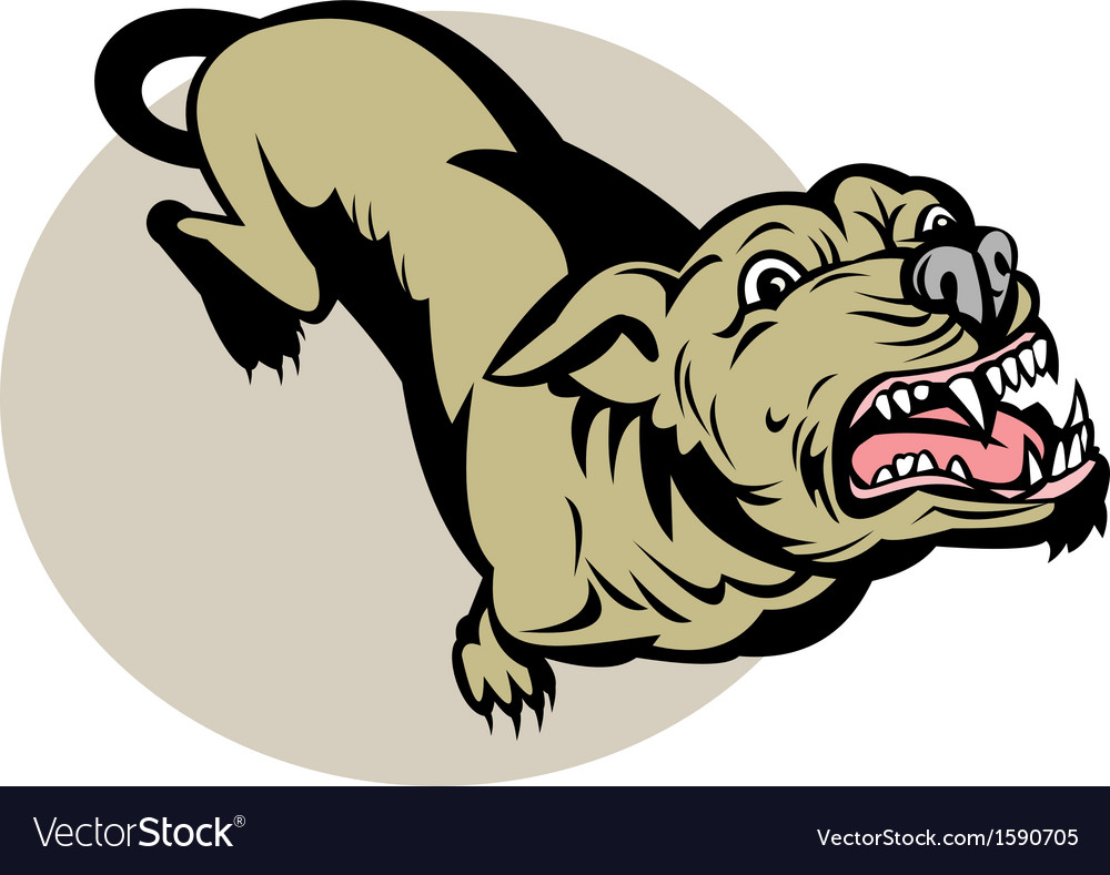 Angry dog barking about to attack vector | Price: 1 Credit (USD $1)