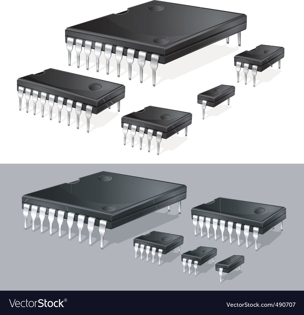 Computer chips vector | Price: 1 Credit (USD $1)