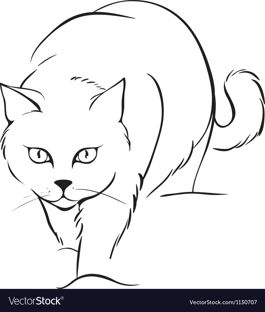 Outline cat vector | Price: 1 Credit (USD $1)