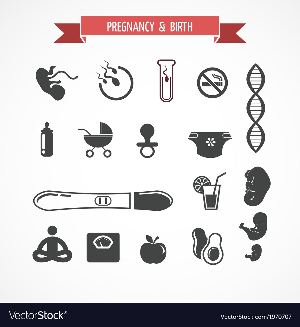 Pregnancy and birth icon set vector | Price: 1 Credit (USD $1)