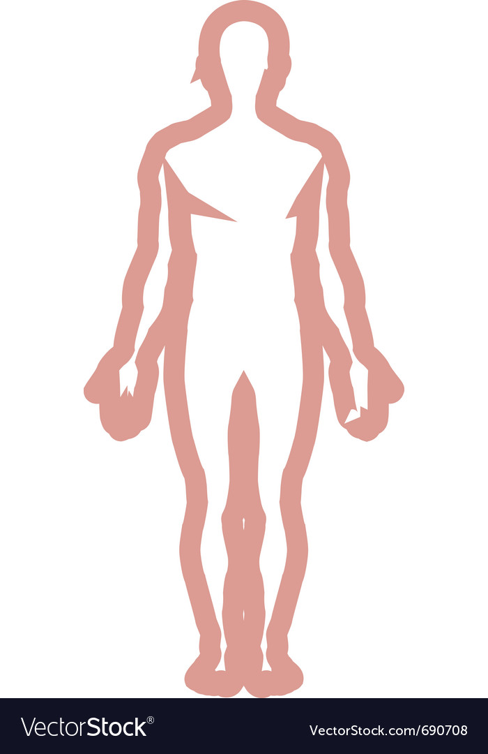 Male body outline vector