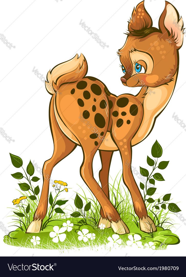 Cute young deer on white background vector | Price: 3 Credit (USD $3)
