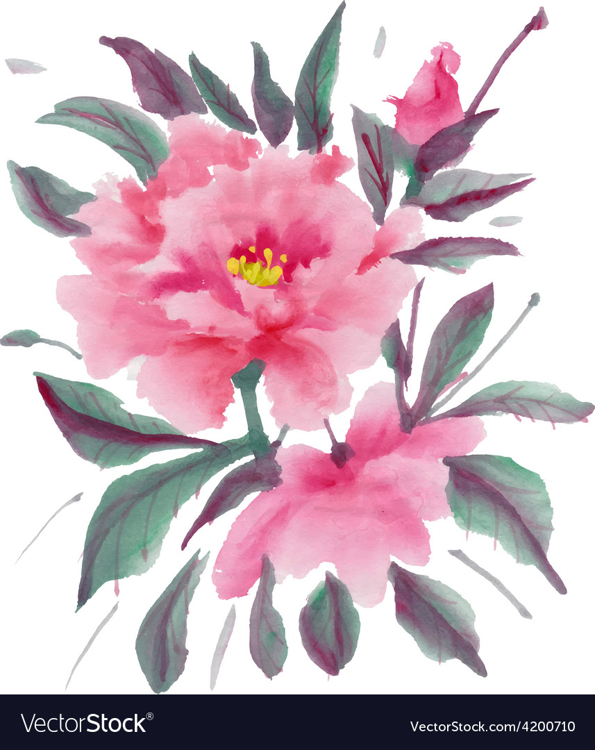 Pink peony vector | Price: 1 Credit (USD $1)