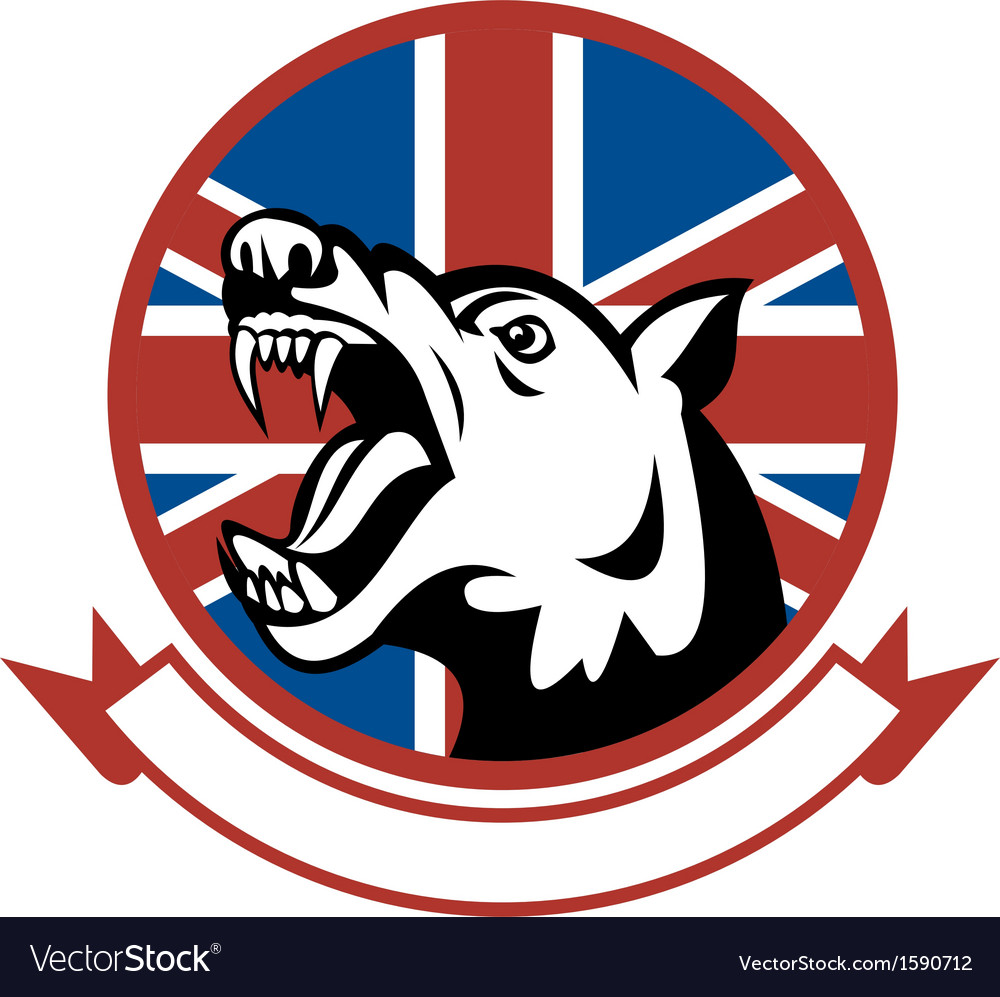 Angry trained guard dog with british flag vector | Price: 1 Credit (USD $1)