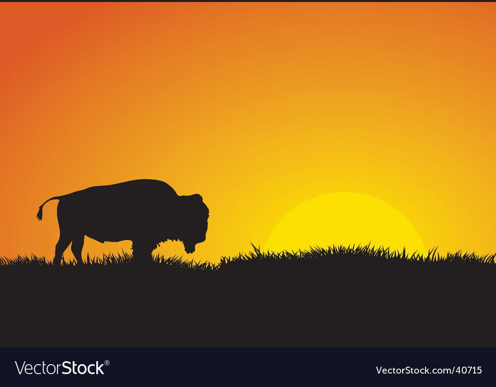 Buffalo silhouette vector | Price: 1 Credit (USD $1)